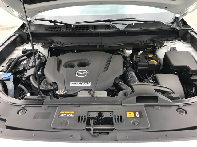 2018 Mazda CX-9 (64745)